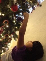 Hanging up ornaments