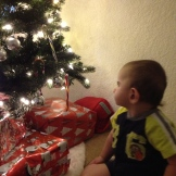 Completely amazed by the tree